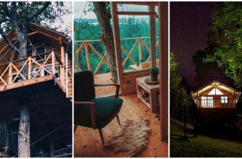 Transylvania Log Cabins - Proiect turistic cu cabane din busteni