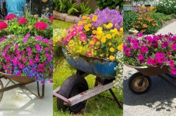 Roabe folosite pe post de jardiniere